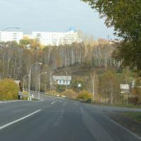 Долина реки Уньга., Кедровка