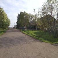Кулацкие коттеджи 2011 (Возле Магазина), Кедровка