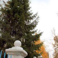2009-10-20 Кемерово Ноградская детский сад №42, Кемерово
