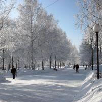 Утренний иней, Киселевск
