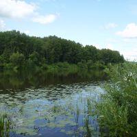 красное озеро, Крапивинский