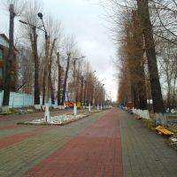 Парк Горького, Ленинск-Кузнецкий