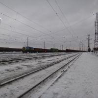 Станция Ленинск-Кузнецкий-1, Вид в сторону ст. Топки, Ленинск-Кузнецкий