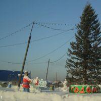 05.01.2011, Мариинск