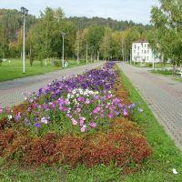 городской парк 3, Междуреченск
