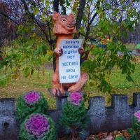 городской парк, Междуреченск
