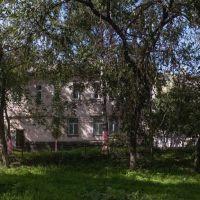 Заросший дворик, сентябрь 2013, Прокопьевск