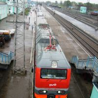 Станция Тайга, Тайга