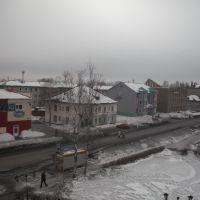 Проспект Кирова, Тайга