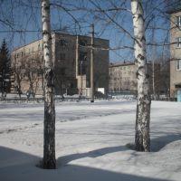 Проспект Кирова, 18, Тайга