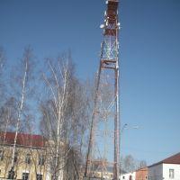 Радиовышка, Тайга