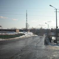 Перекрёсток Лермонтова и Пушкина, Тайга