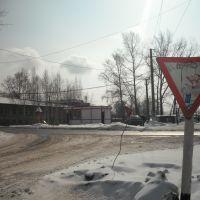 "Павильон ""Кировский"", Тайга"