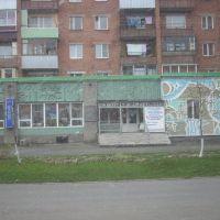 Музей этнографии и природы Горной Шории, Таштагол