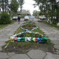 Во дворе Тисульской ЦРБ., Тисуль