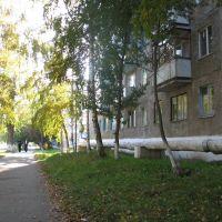 улица Луначарского, Топки