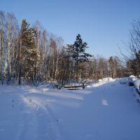 зима в деревени (утро), Тяжинский