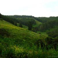 Siberia. Near the road. (Трасса на Красноярск), Тяжинский