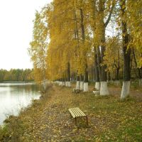 Осень, Белая Холуница