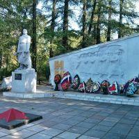 Памятник павшим героям, Белая Холуница