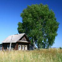 Последний дом в д. Кузницы, Богородское