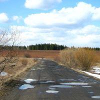 Дорога на п.Вахруши, Богородское