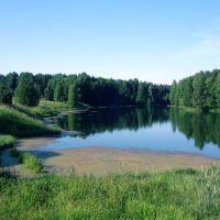 Васнецовские пруды, Богородское