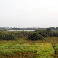 Косино, Богородское