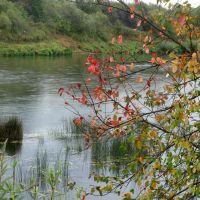 Река Чепца, сентябрь, Богородское