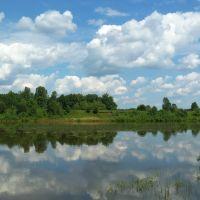 Правый берег Чепцы у Ильинского, Богородское