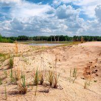 Оазис в песках, Боровой