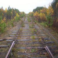 Конец пути за Нижней Туруньей(дальше разобрано), Боровой