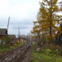 Ул.Базарная, октябрь, Зуевка