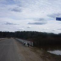 Автомобильный мост через р. Кобра на д. Окатьево 2011, Кобра