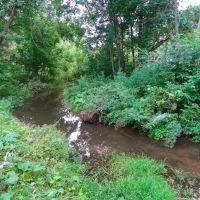 Речка в Динопарке, Котельнич