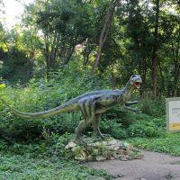 Гетеродонтозавр в Котельниче, Котельнич