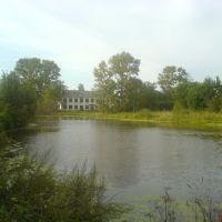 Вид на школу с моста, Ленинское