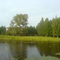 Пруд, Ленинское