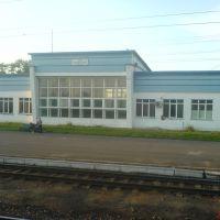 ЖД Вокзал Шабалино, Ленинское