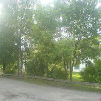 Школа, Ленинское