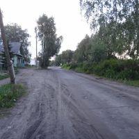 Улица Пролетарская, Луза