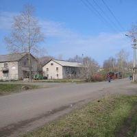 Улица Пугачева, Мураши