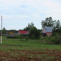 Деревня Кусакины, Нововятск