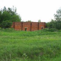 Стена, Нововятск
