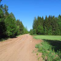 На высшей точке местности, Нововятск