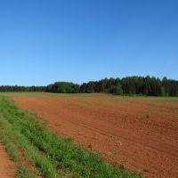 Красное поле, Нововятск