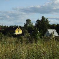 Дачи в Кусакиных, Нововятск