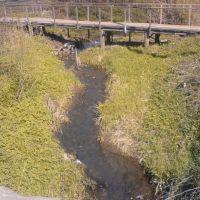 Название городу дала эта речка Ноля..Name the city gave this river Nolya.., Нолинск