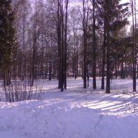 Санчурский парк, Санчурск