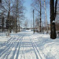 Ворота ПКиО, Слободской